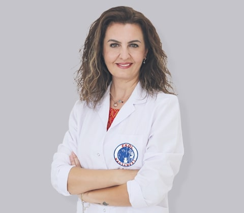uzm dr esra arisoy izmir ekol hastanesi